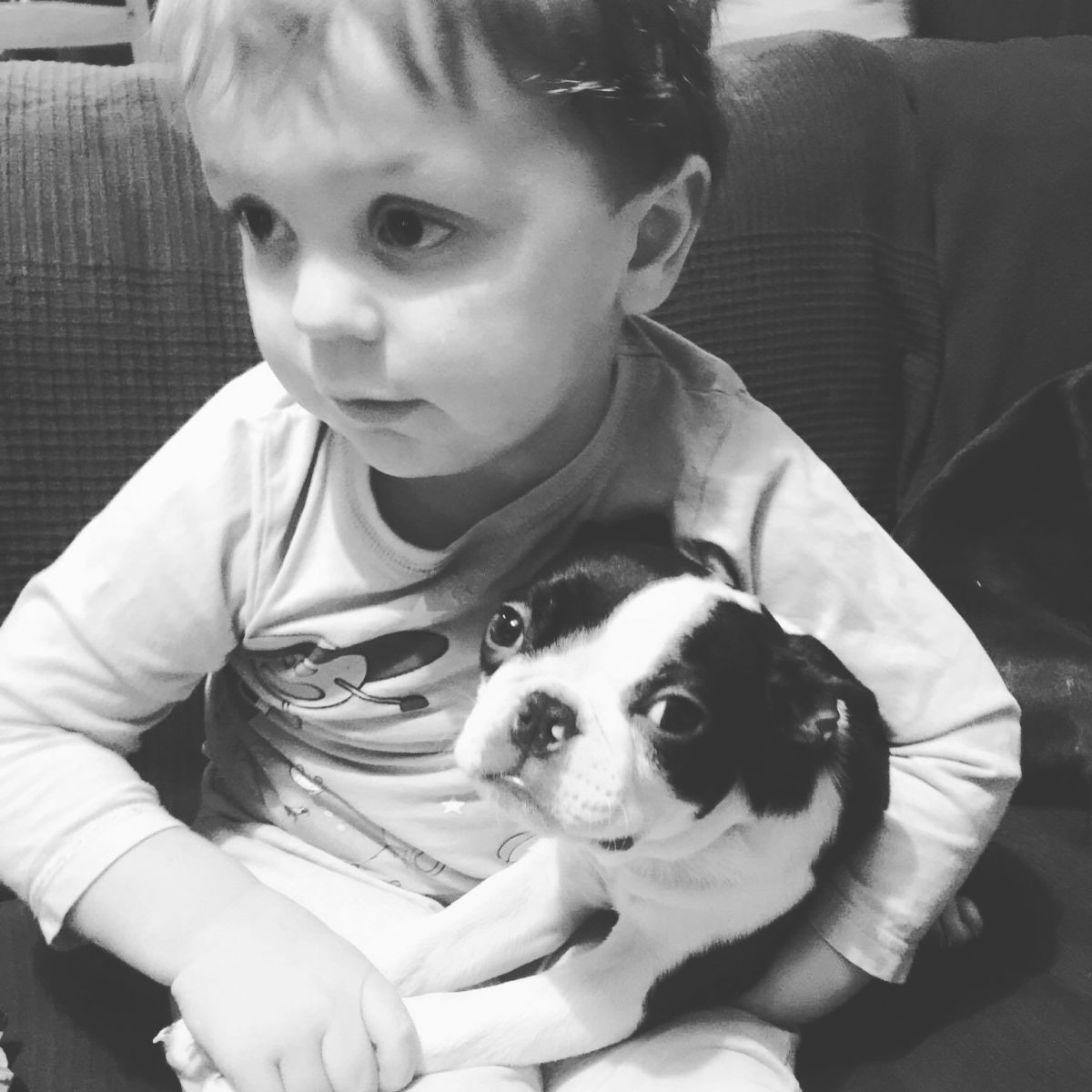 A young boy and a Boston Terrier hoping to be a vet.