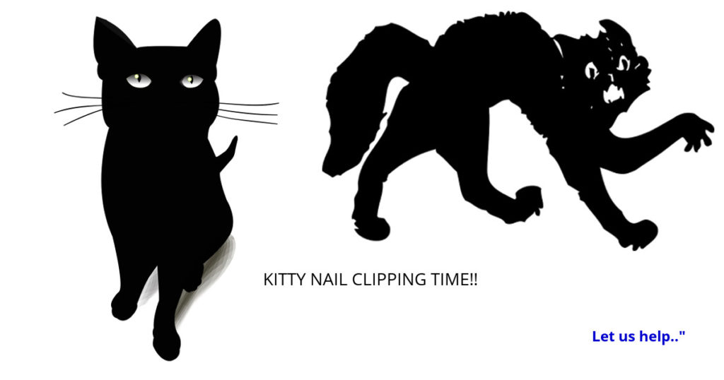 gleam-kittynails-offer-scaredy-cat